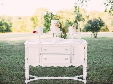Mckinney-Wedding-Planner-Chandlers-Garden-Enchanted-Forest-Vintage-Wedding-11