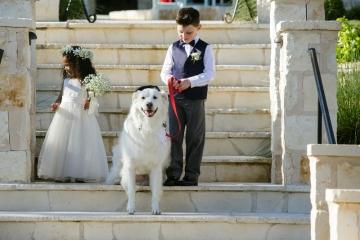 McKinney-Wedding-Planner-The-Springs-Denton-Hidden-Springs-Fun-Casual-Wedding-16