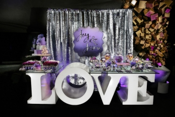 Dallas-Wedding-Planner-Perot-Museum-Gems-and-Minerals-Purple-Shimmer-Wedding-05