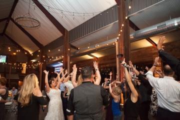 McKinney-Wedding-Planner-Stone-Crest-Venue-Silver-Sequin-and-Blue-Wedding-58