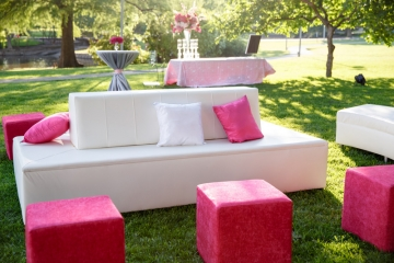 Dallas-Wedding-Planner-Dallas-Cooper-Spa-and-Hotel-Tent-Wedding-Pink-and-Grey-Wedding-08